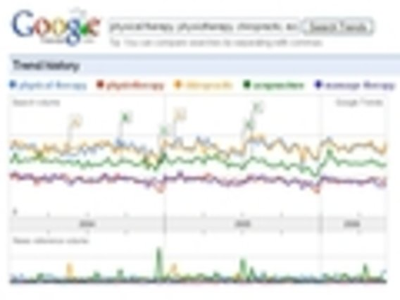 Google-trends-physio