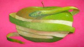 Snake_and_apple