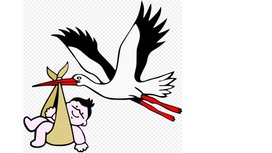 File_stork_with_new-born_child.png_-_wikimedia_commons