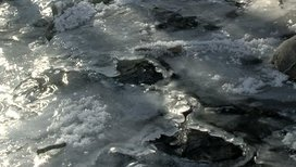 Stock-footage-water-flowing-in-patterns-under-thin-ice-in-a-stream