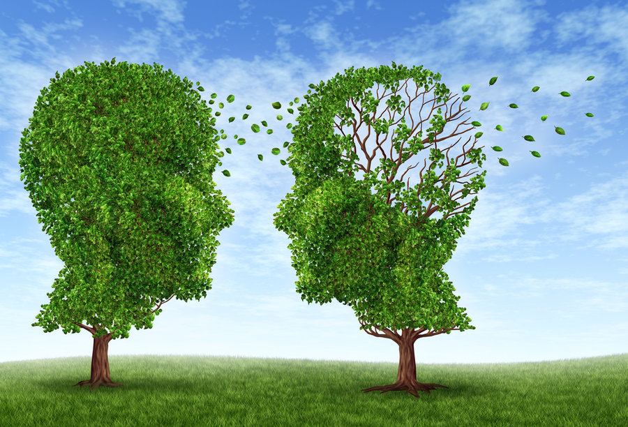 Neuroscientists Succeed in Planting False Memories in the Brain
