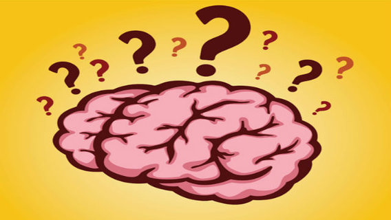 Brainquestion_big_think