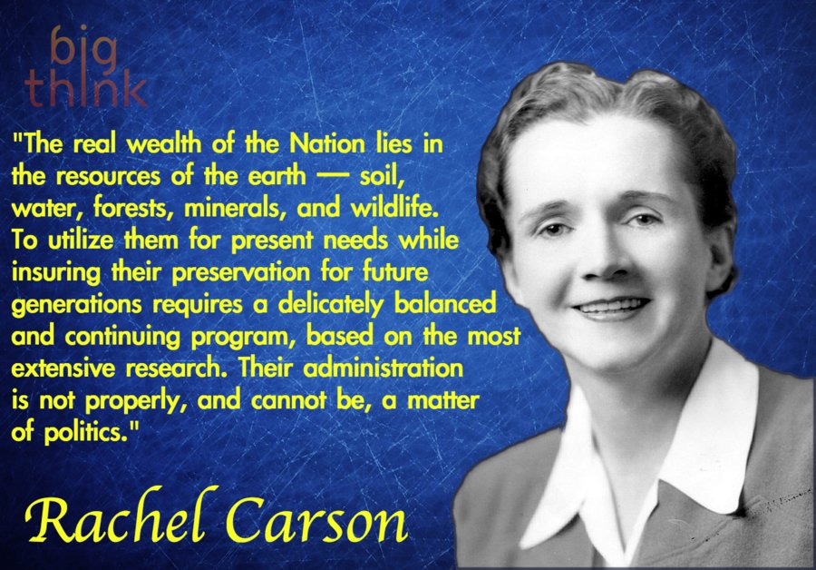 Image result for lost woods, rachel carson