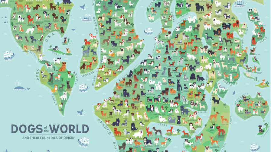 Strange maps big think over 40 of the worlds dog breeds come from these 3 countries gumiabroncs Gallery