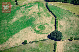 The_almost_ploughed-down_medieval_castle_mound_at_castell_llwyn_gwinau__tregaron__showing_clearly_under_parched_conditions.