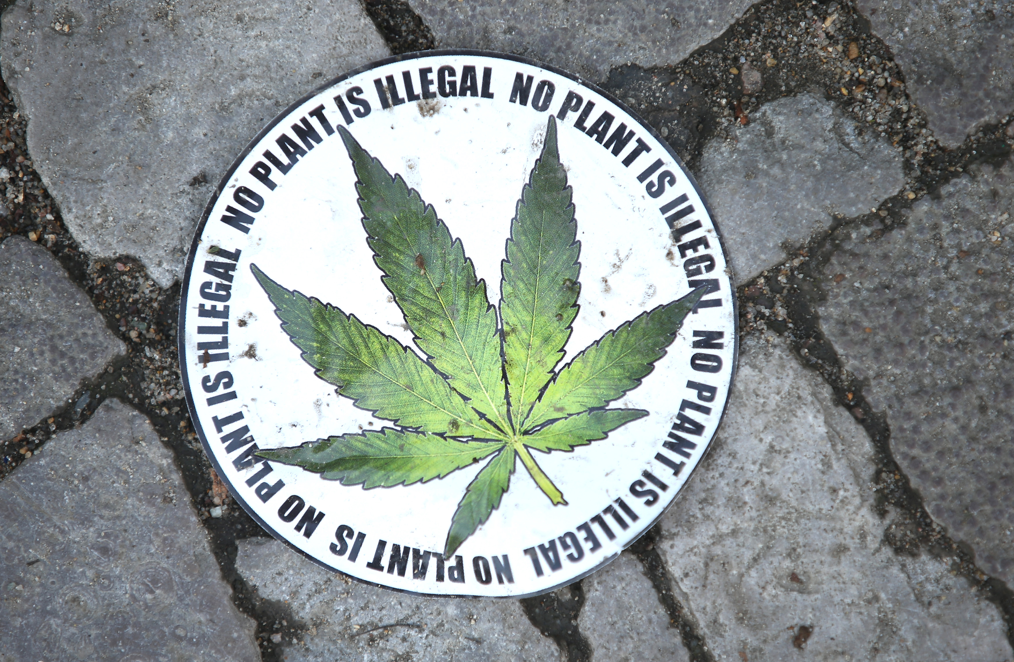 No plant is illegal