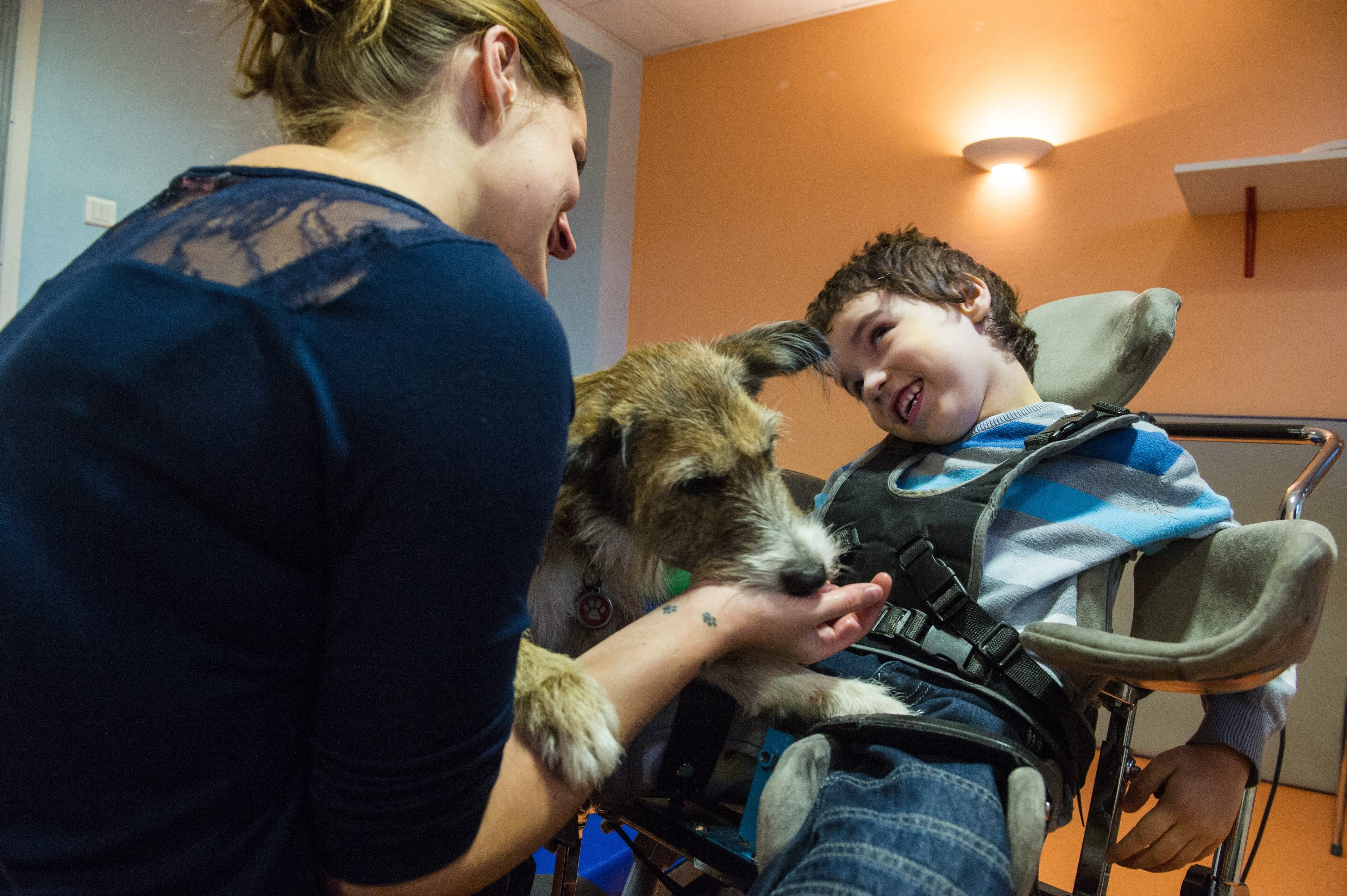 Animal Assisted Therapy In Nursing Homes