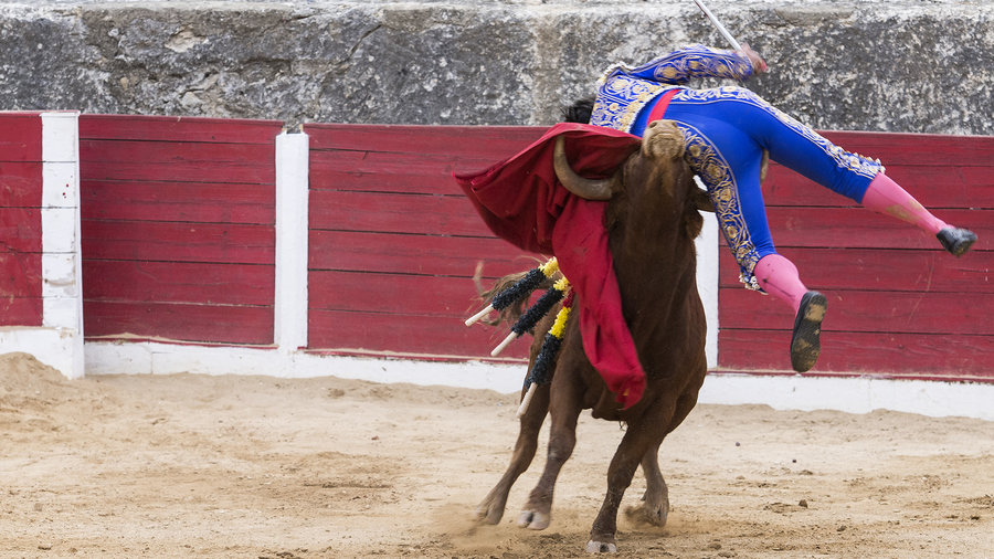 Bull-fighting-ps-cms