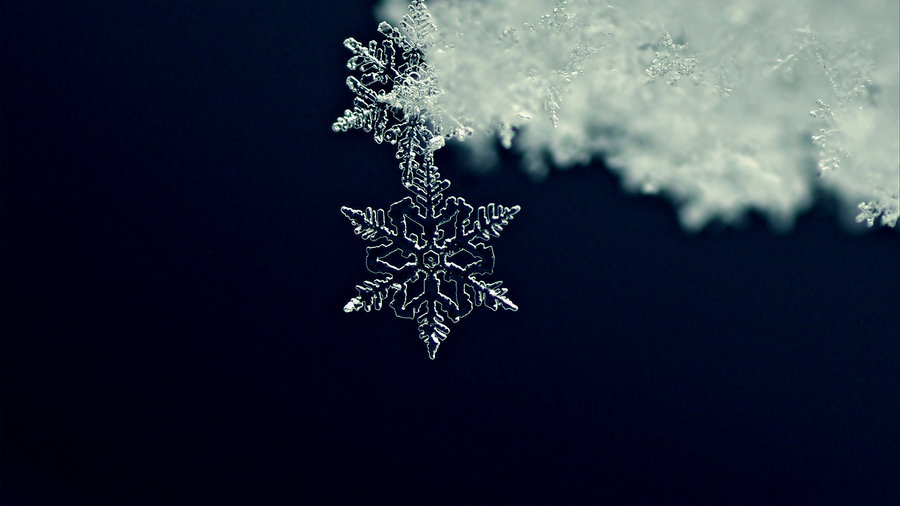 C_booker_snowflakes_cms